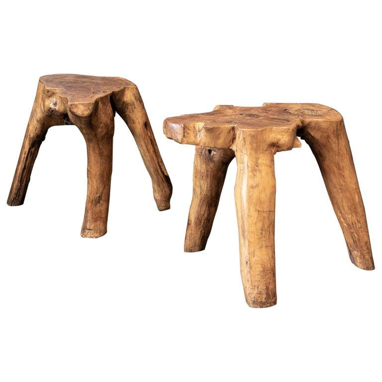 English Pair Primitive Teak Root Side End Tables For Sale