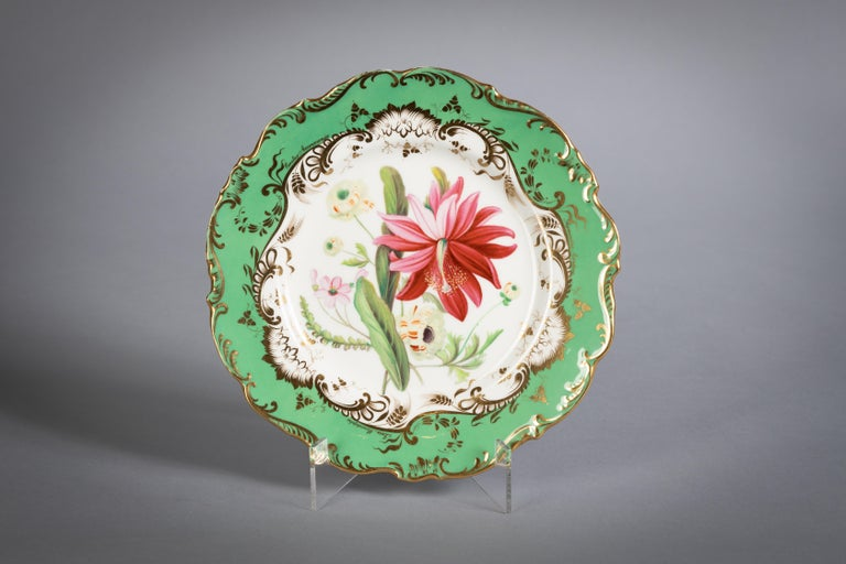 English Porcelain Botanical Dinner Service, Coalport, circa 1840 For Sale 7
