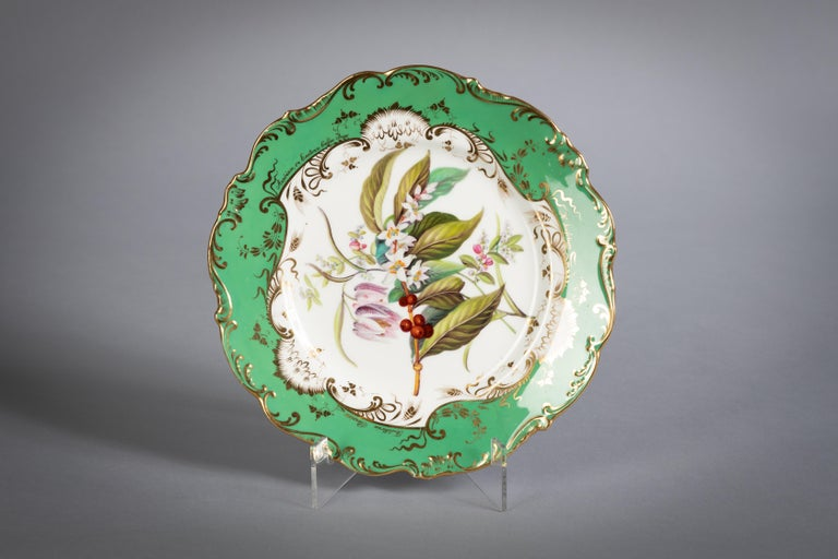 English Porcelain Botanical Dinner Service, Coalport, circa 1840 For Sale 9