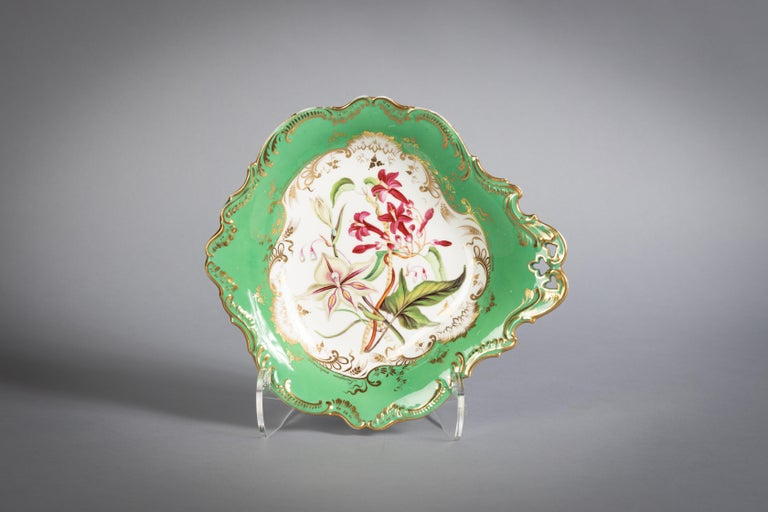 English Porcelain Botanical Dinner Service, Coalport, circa 1840 For Sale 15