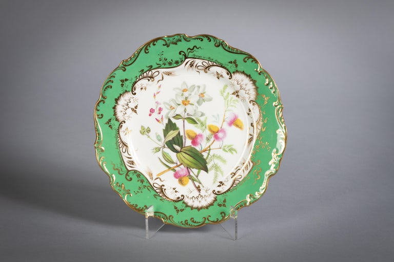 English Porcelain Botanical Dinner Service, Coalport, circa 1840 For Sale 3