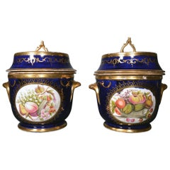 English Porcelain Coalport Pair of Botanical Fruit Coolers, Covers, and Liners