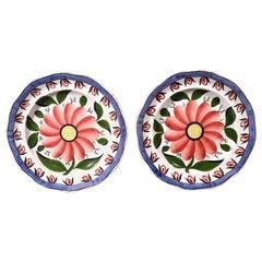 English Pottery Pearlware Botanical Plates, circa 1840