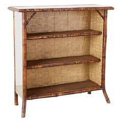 English Regency Mirrored Bamboo Bookcase of Shelf