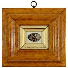 English Regency Period Original Watercolor Fruitwood Frame Black Speckled Egg