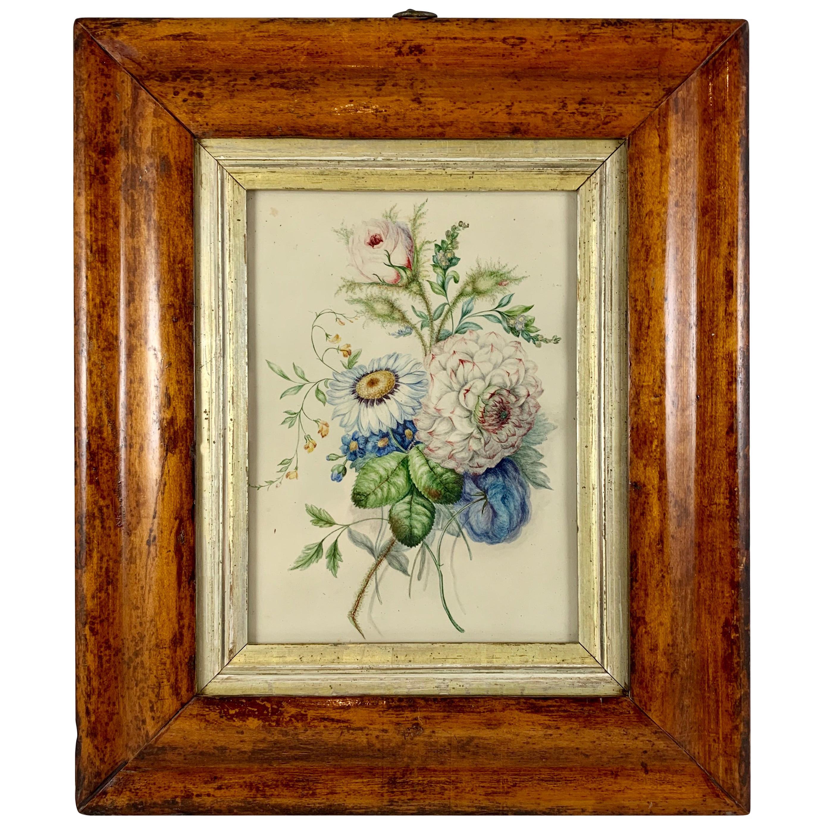 English Regency Period Original Watercolor in Fruitwood Frame, Daisy and Dahila