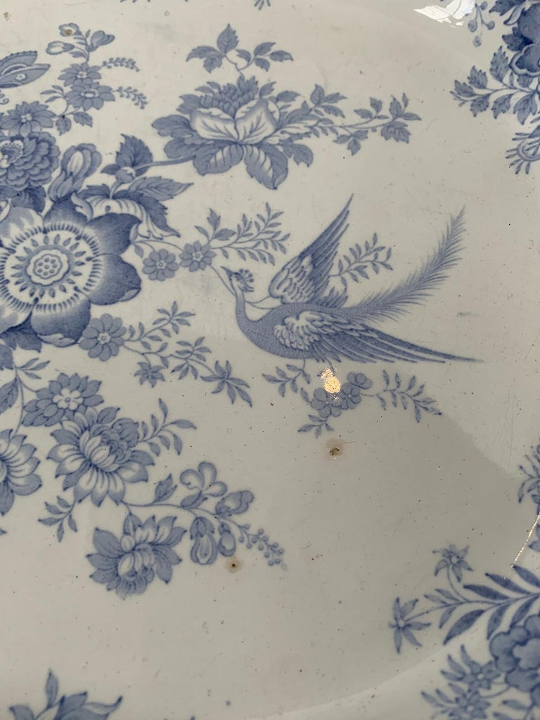 English Transferware Oval Charger in Asiatic Pheasants Pattern, Unmarked For Sale 8