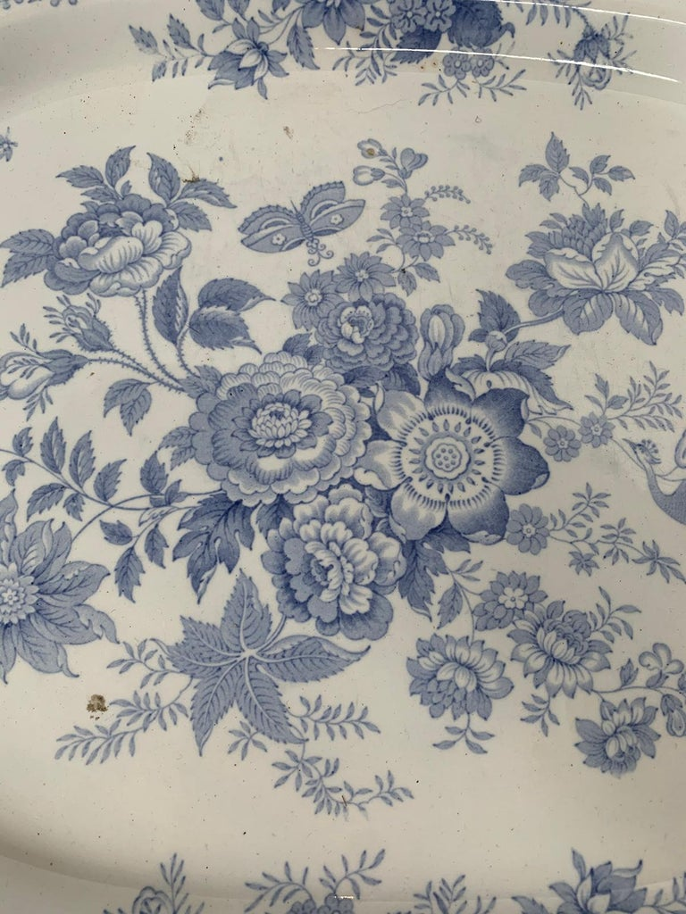 English Transferware Oval Charger in Asiatic Pheasants Pattern, Unmarked For Sale 3