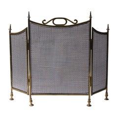 English Victorian Fireplace Screen or Fire Screen