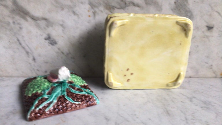 English Victorian Sardine Box with Shell, circa 1890 In Good Condition For Sale In The Hills, TX