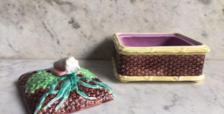 Late 19th Century English Victorian Sardine Box with Shell, circa 1890 For Sale