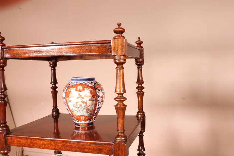 English Whatnot 19th Century in Mahogany For Sale 5