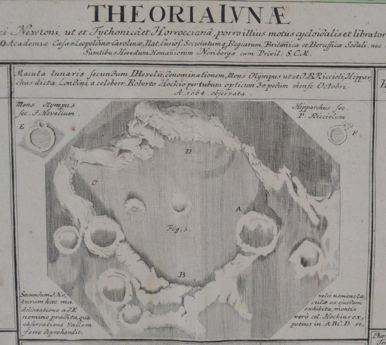 18th Century and Earlier Engravings Celestial Charts, Cartographer, Astronomer Doppelmayr from 1740 For Sale