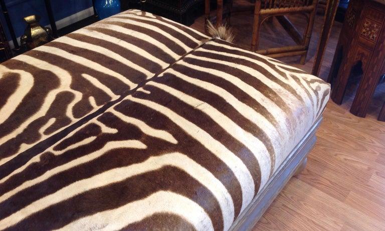 Enormous Zebra Hide Ottoman For Sale 3