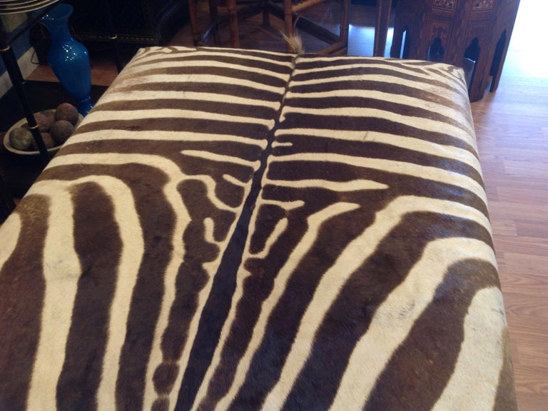 Enormous Zebra Hide Ottoman For Sale 4