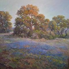 """""""Die Walder Im Abendlicht"""" Bluebonnet Texas Hill Country Landscape large"""