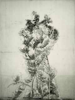 """Alberone"", modernist landscape etching tree print, warm black and white."