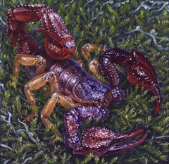 SCORPION, photo-realism, scorpion in grass, purple, green, insect, nature