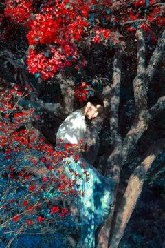 Brianna sitting in Apple Orchard, The Garden – Erik Madigan Heck, Fashion, Woman