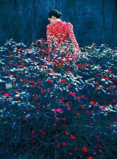 Not Titled Yet – Erik Madigan Heck, Fashion, Woman, Landscape, Nature, Dress