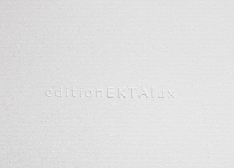 Persephone VI - large format photograph of a timeless environmental still - Gray Color Photograph by Erik Pawassar