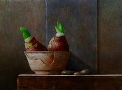 Amaryllis- 21st Century Contemporary Still-life painting with