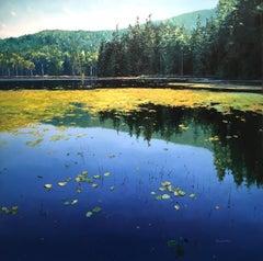Bowen Lake Canada original landscape painting