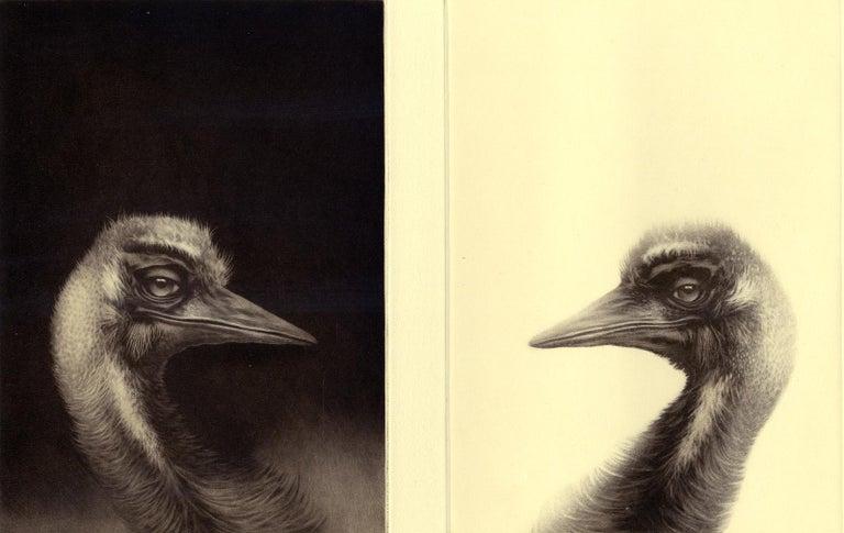 Erling Valtyrson Animal Print - Birdheads (two beaked birds facing off)