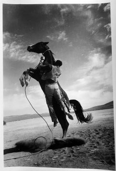Jumping Horse, Contemporary Black and White Photography of Mustang Horses 1960s