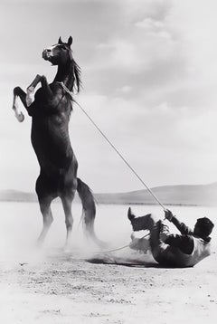 Mustang, Contemporary Black and White Photography of Horse and Western Rider