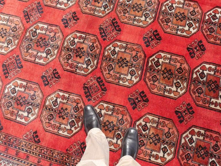 Ersari Rug Large Size Tribal Turkoman Hand Knotted Semi Antique Carpet For Sale 4