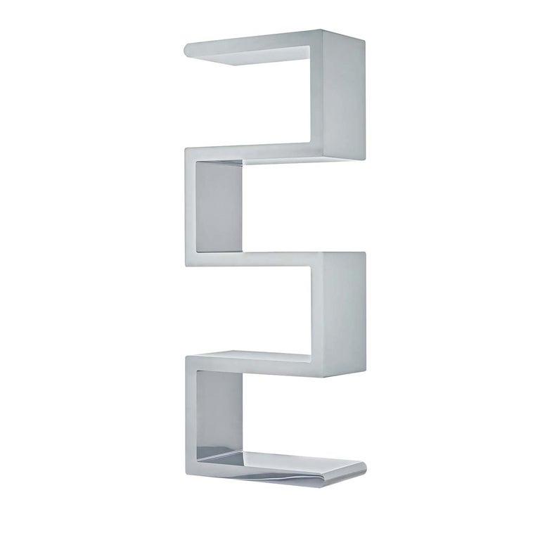 Espongo Bookcase by Giancarlo Pretazzoli For Sale