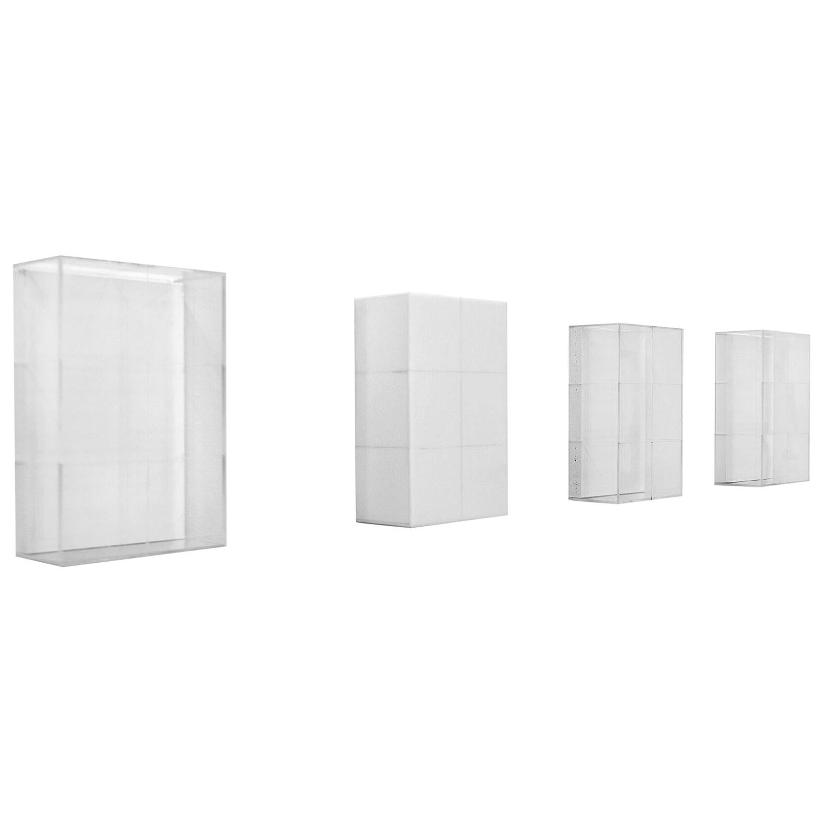 Etapas 1-4 Plexiglass Wall Sculpture Series Edition 1/3