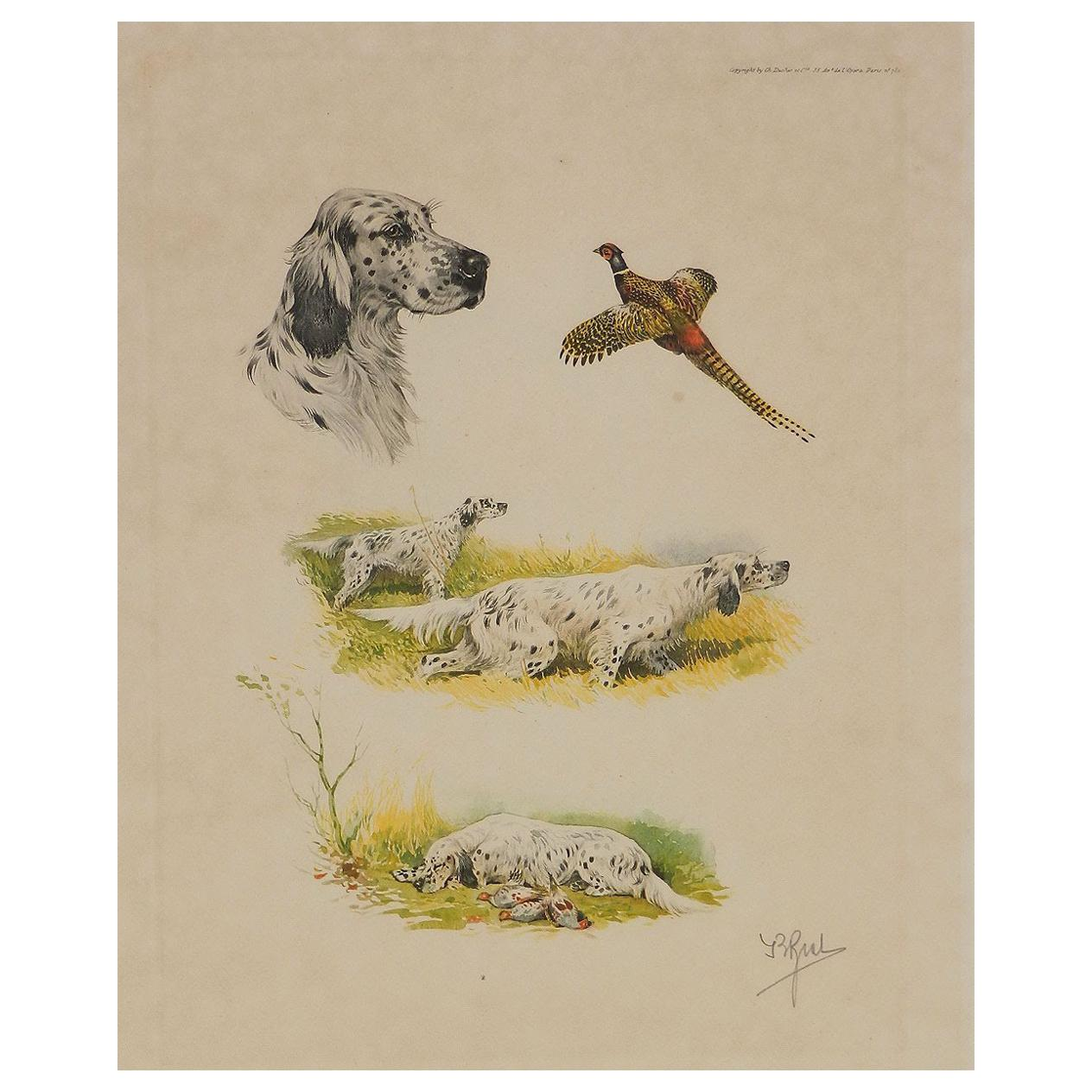 Etching Aquatint of Working Dogs and Pheasant French Boris Riab