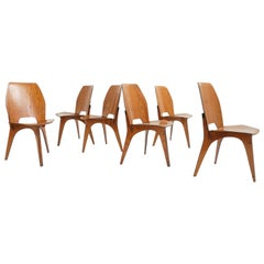 Eugenio Gerli, Tecno by Borsani, Italy 1959 Iconic Collector Teak Plywood Chairs
