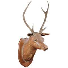 European Carved Wood Deer Wall Mount