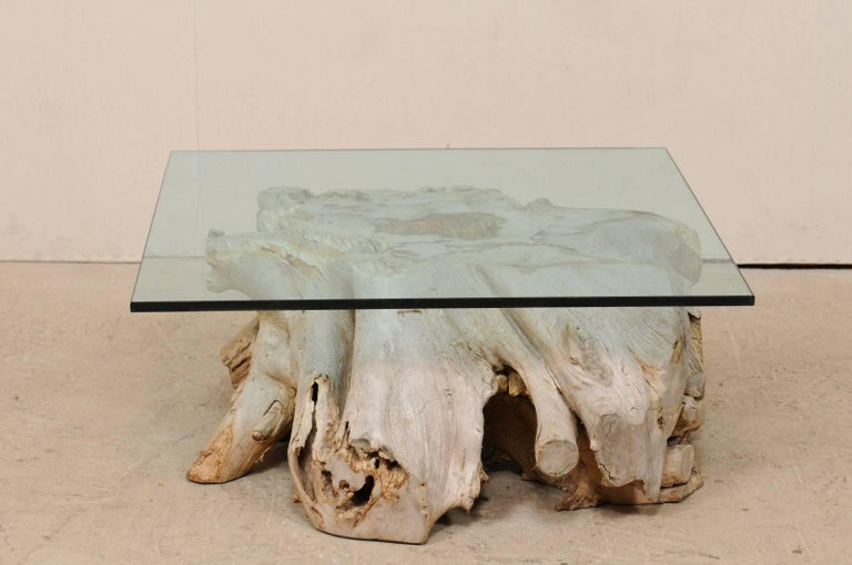 A European wooden tree root coffee table with glass top. This natural wood coffee table has been fashioned with the use of a 19th century European tree root/stump as it's base, and the addition of a newer, square-shaped glass top. The wood has a