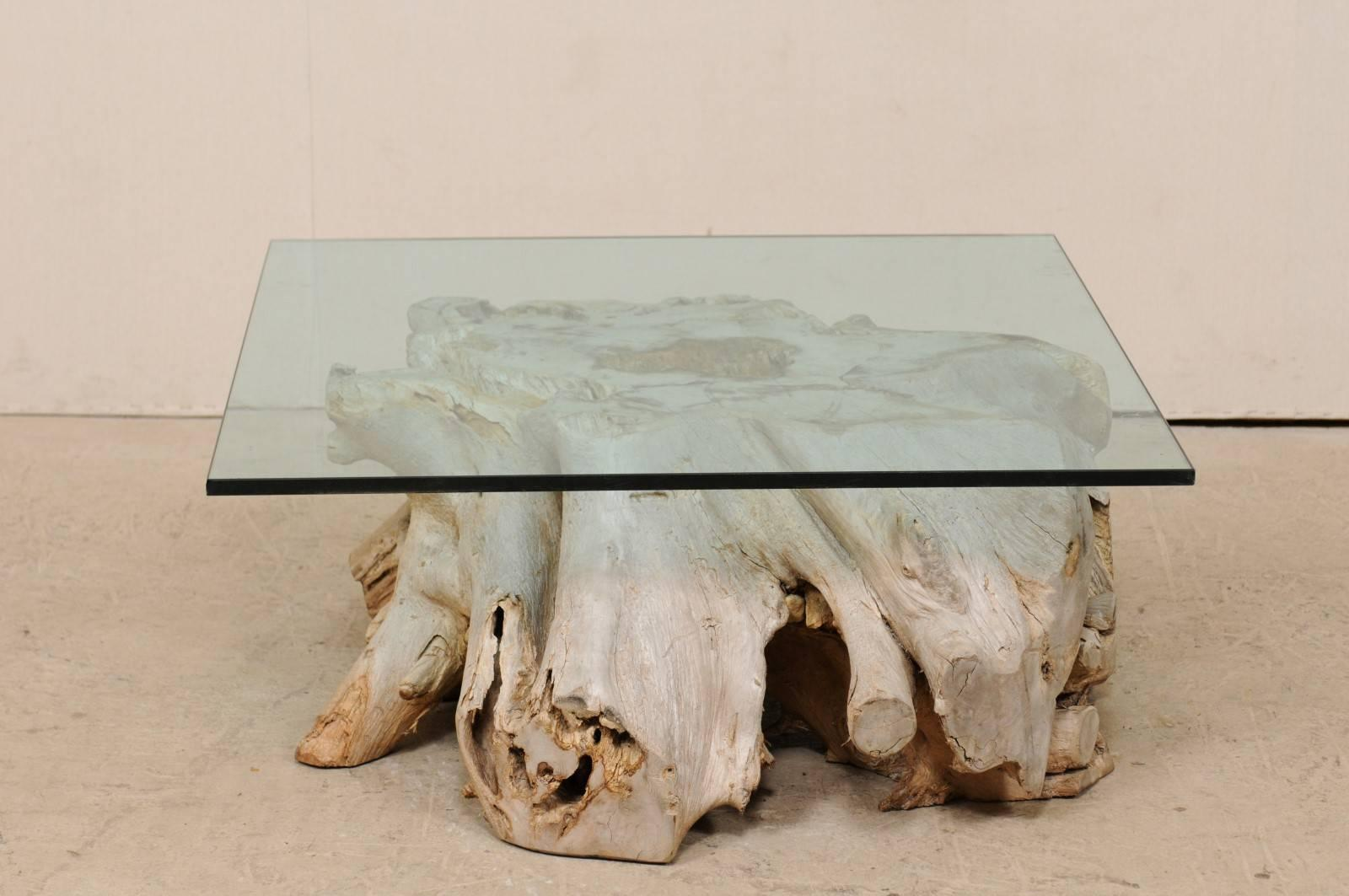 Exceptionnel European Tree Root From 19th Century Fashioned Into Coffee Table With Glass  Top