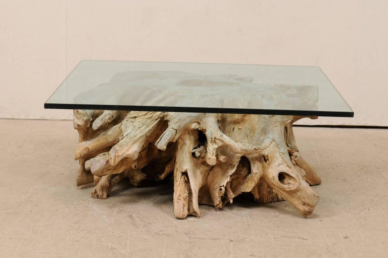 Bleached A Custom Glass Top & 19th C. European Natural Wood Tree Stump Base Coffee Table  For Sale