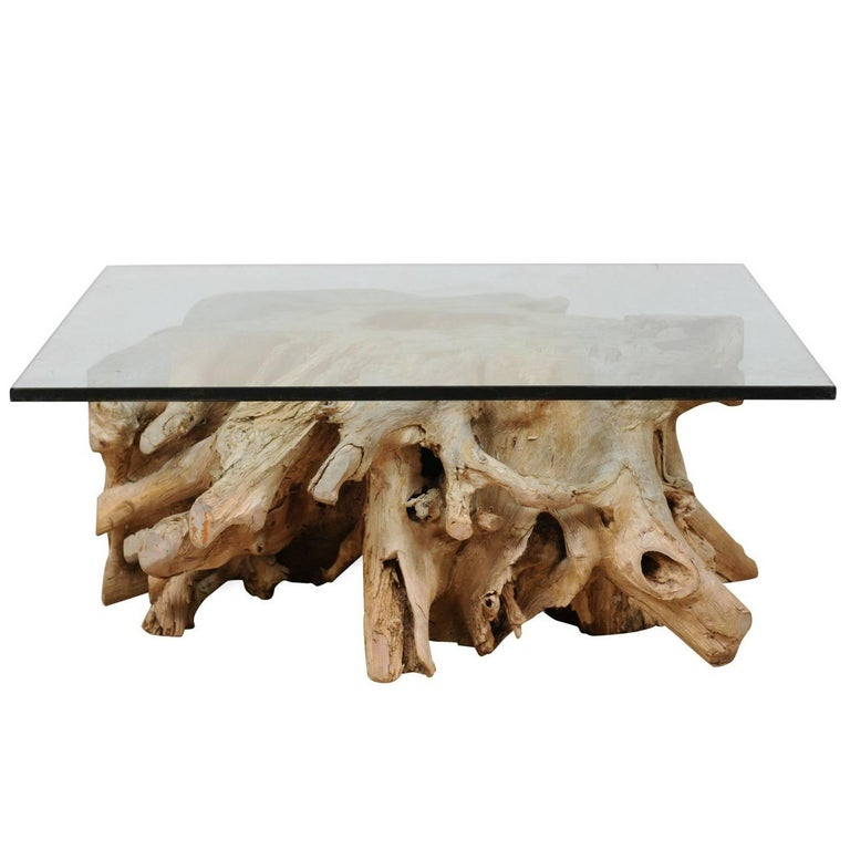 A Custom Glass Top & 19th C. European Natural Wood Tree Stump Base Coffee Table  For Sale