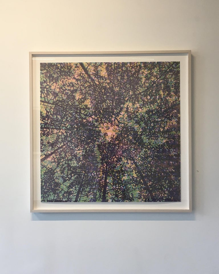 Woodland Skyscape Variation 95, Forest Sky Woodcut in Purple, Green, Yellow - Print by Eve Stockton