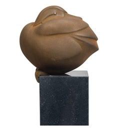 Zittend Eendje Sitting Duck Resin Sculpture Corten Steel Coating Animal