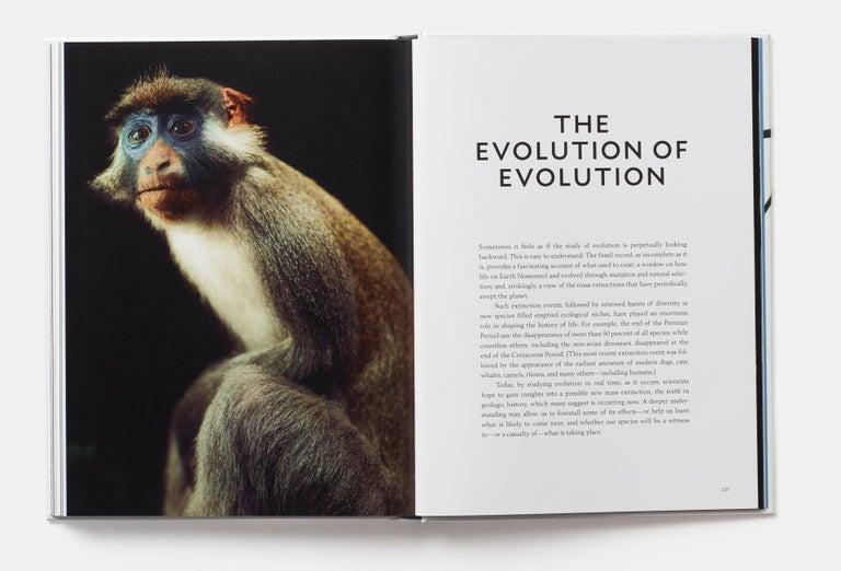 Evolution: A Visual Record For Sale 2