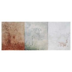 Evolution Triptych Painting #1