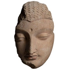 Exceptional Ancient Gandharan Buddha Head Sculpture, 350 AD