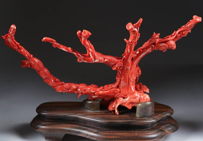 An exceptional Chinese carved coral tree branch with monkeys and squirrels, Qing dynasty.