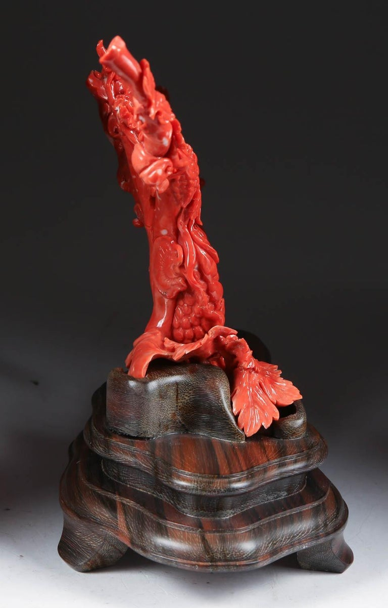 Exceptional Chinese Carved Coral Tree Branch with Monkeys and Squirrels, Qing In Good Condition For Sale In New York, NY