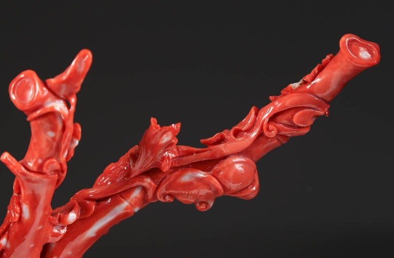 Exceptional Chinese Carved Coral Tree Branch with Monkeys and Squirrels, Qing For Sale 4