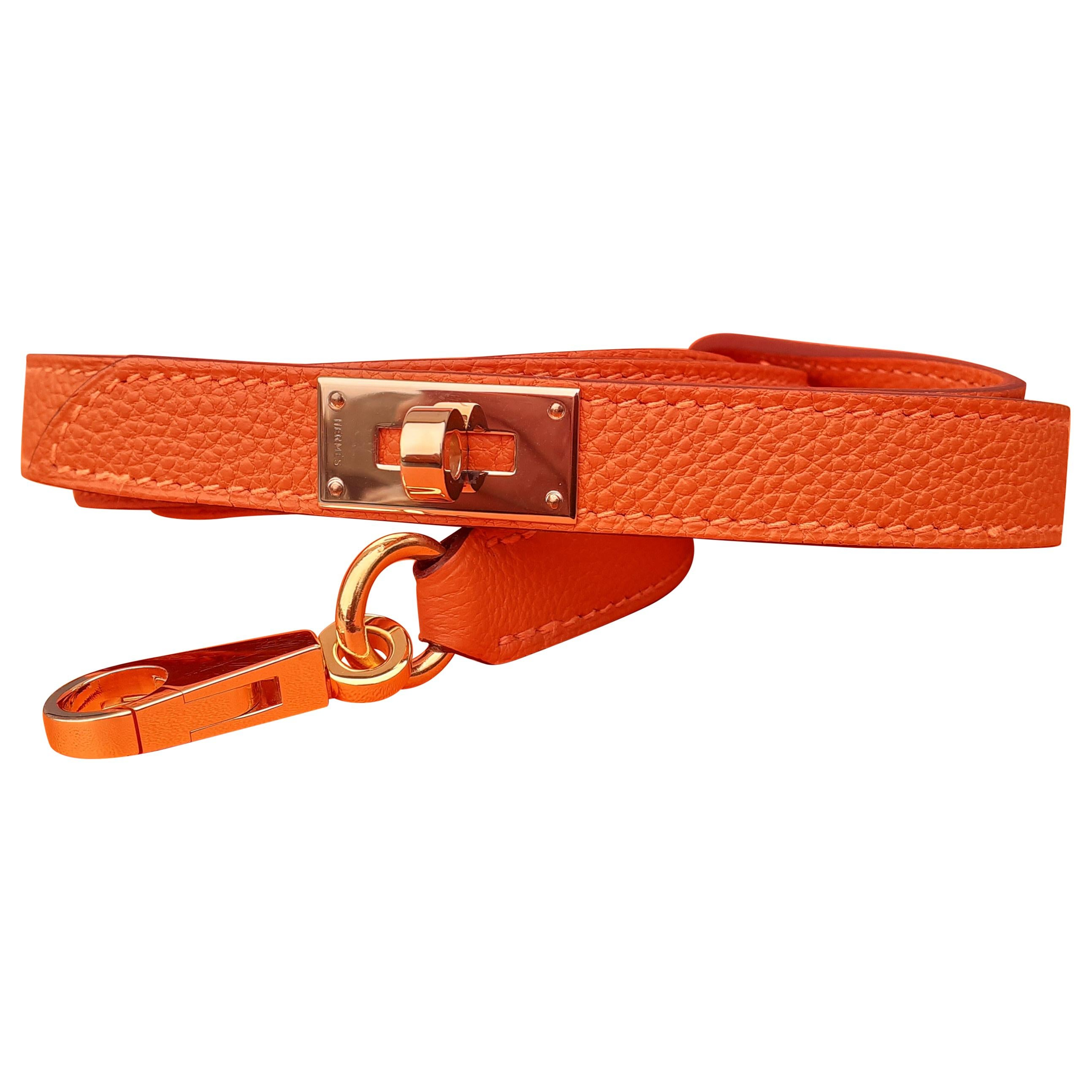 Exceptional Hermès Dog Leash Kelly Pattern Orange Leather Gold Hdw