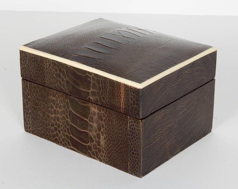 Exotic Ostrich Brown Leather Decorative Box with Bone Inlay In Excellent Condition For Sale In Stamford, CT
